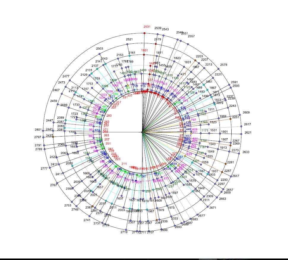 spirale NP2